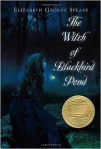 Buy The Witch of Blackbird Pond