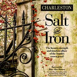 Salt-and-Iron_250
