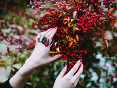 Woman picking fall berries