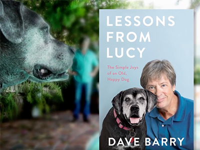 One Lesson We Could All Learn from Dogs - Tips on Life and Love