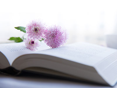 flower resting on book