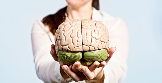 9 Tips for a Healthy Brain